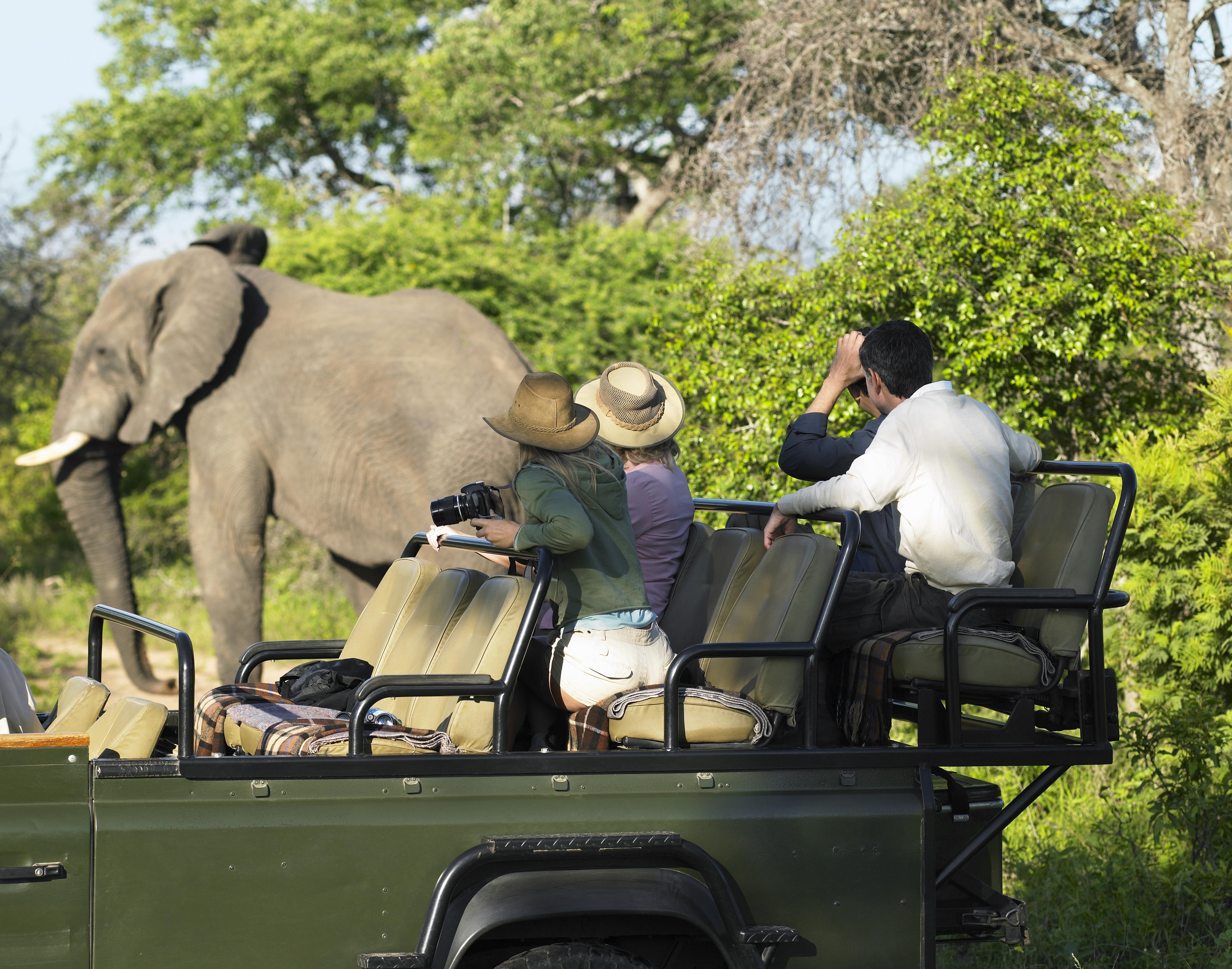 Safari-jeep-photo
