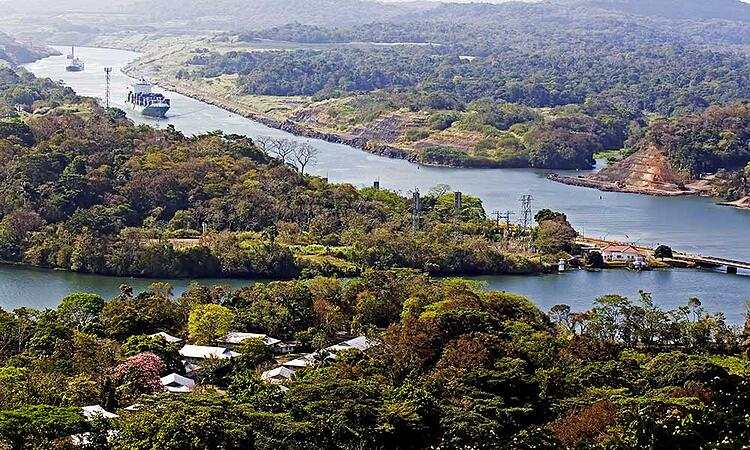 Voyages-Traditours-Canal-Panama-Foret