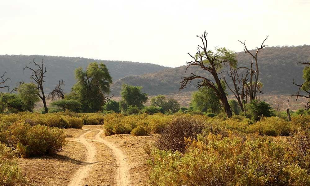 Voyages-Traditours-Safari-Tanzanie-route