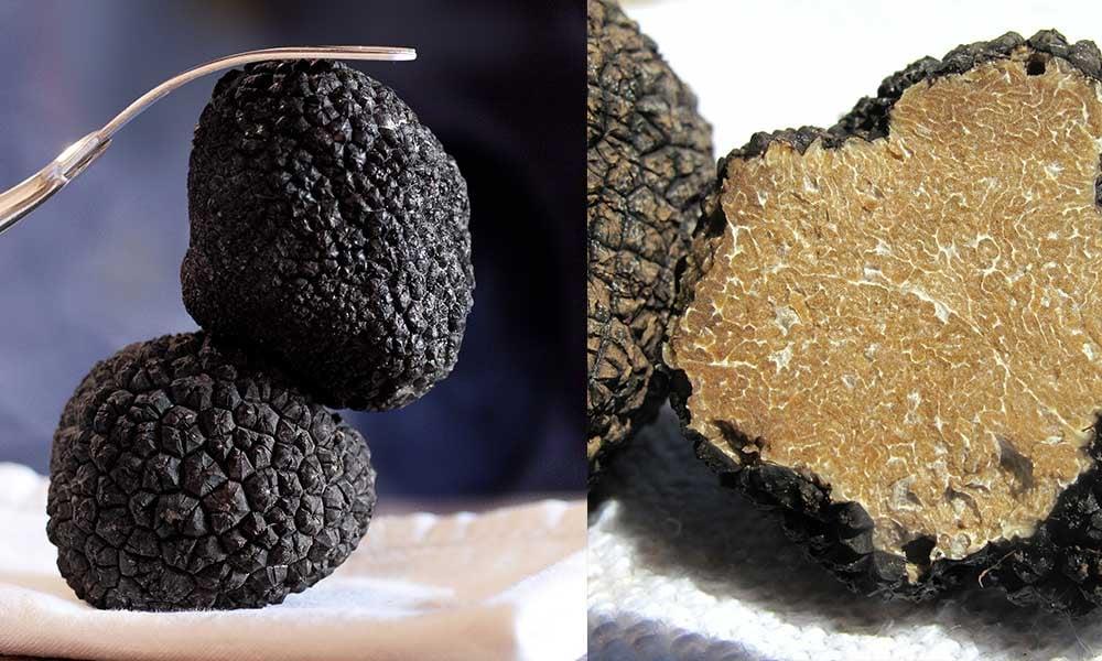 France-produits-gourmands-truffe