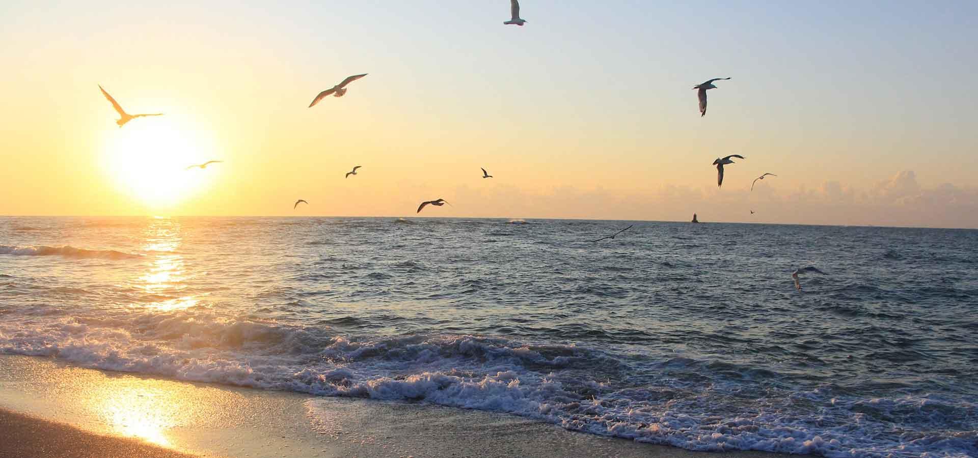 L'énigmatique mer Noire