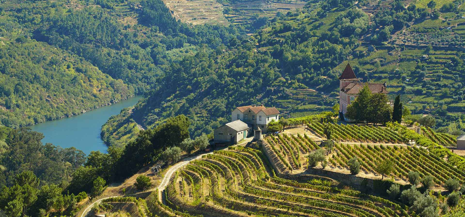 Voyages-Traditours-circuits-Portugal-vallee-Douro