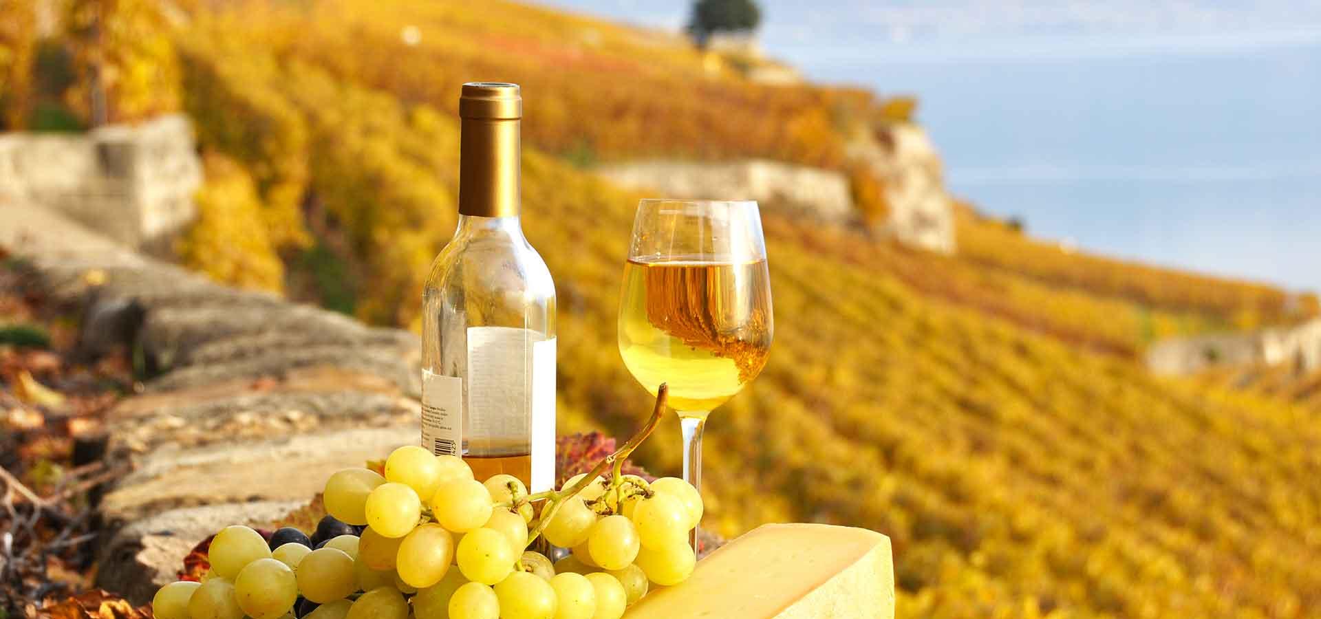 Destinations-voyage-oenotourisme-vins-vignobles