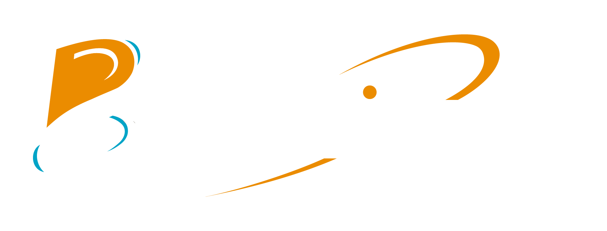 logo-blogue-traditours-complet-reverse